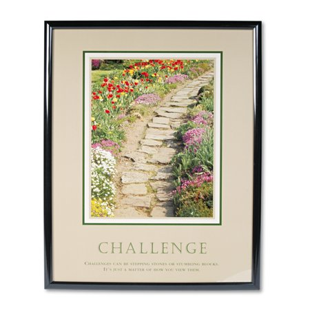 "Image of Advantus ""Challenge"" Framed Motivational Print, 24 x 30"
