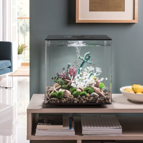 biOrb by Oase CUBE 60 Aquarium with LED Light