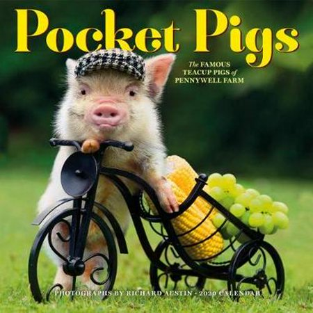 Calendar With Pockets (2020 Pocket Pigs Wall)