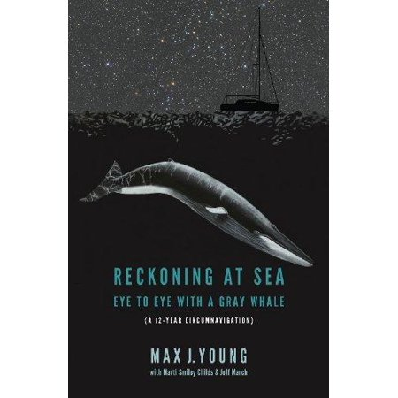 Reckoning At Sea  Eye To Eye With A Gray Whale