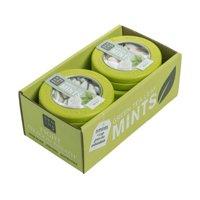 Moroccan Mint Green Tea Mints 6/60PC