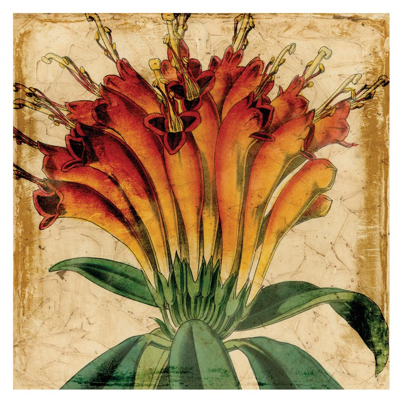 Art Effects Vibrant Floral IV Canvas Wall Art S18747