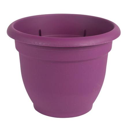 Bloem Ariana Self Watering Planter 8
