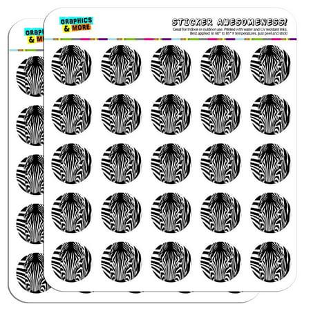 Zebra Face Safari Print Stripes 1