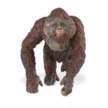Safari Ltd  Wildlife Orangutan Male Figure