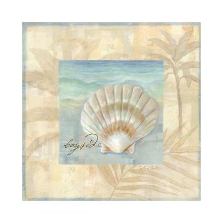 Island Shell IV by Cynthia Coulter 12x12 Art Print Poster   Fan Shell Bayside Seashells Ocean Palm Tree Seaside