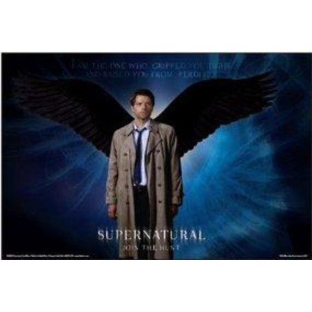 Supernatural Castiel Wings Television Series TV Show ...