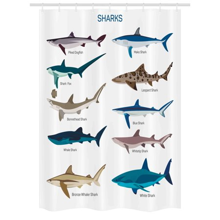 Shark Stall Shower Curtain, Collection Types of Sharks Bronze Whaler Piked Dogfish Whlae Shark Maritime Design, Fabric Bathroom Set with Hooks, 54W X 78L Inches, Multicolor, by