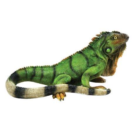 Iguana Garden (Michael Carr Iguana, Medium )