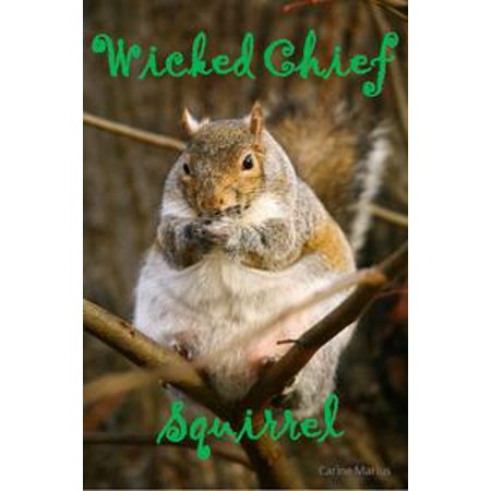 9 Year Old (Wicked Chief Squirrel, a Short Story for 9 year old children -)