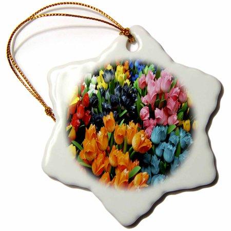 3dRose Holland Tulips, Snowflake Ornament, Porcelain,