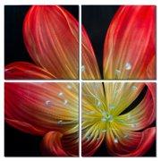 Metal Artscape Ember Lily 4 Piece Graphic Art Plaque Set