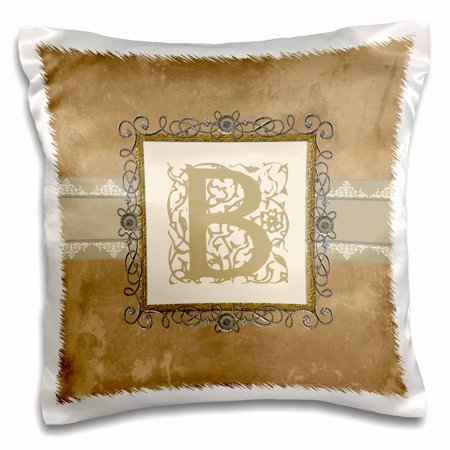 Vintage Pewter Finish - 3dRose B Initial Vintage Elegant Vines and Flowers in Sepia and Pewter Look - Pillow Case, 16 by 16-inch