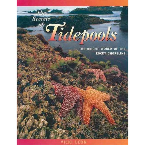 The Secrets of Tidepools: The Bright World of the Rocky Shoreline