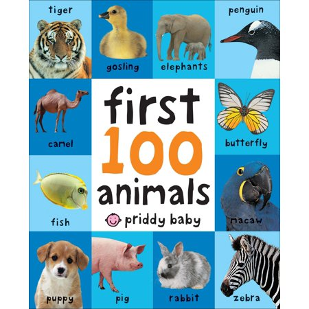 1st 100 Animals (Board Book) - Baby's First Halloween Ideas