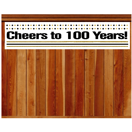 Item#100CIB 100th Birthday / Anniversary Cheers Wall Decoration Indoor / OutDoor Party Banner (10 x - 100th Birthday Banners