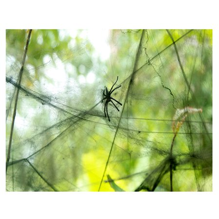 Halloween Cobweb Props Stretchy Spider Web with 2 Spiders Spooky Decoration - Black