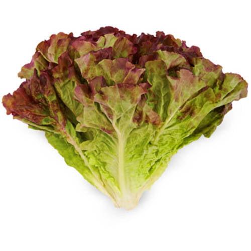 Red Leaf Lettuce, each - Walmart.com - Walmart.com
