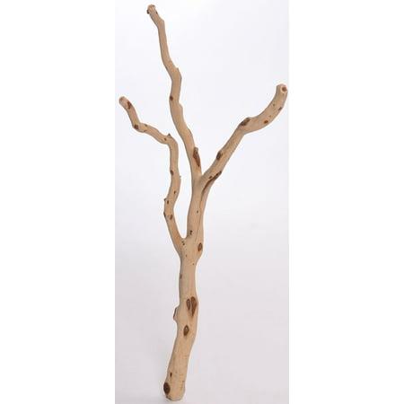 Sandbasted Manzanita Bird Perches - Trees 12-15