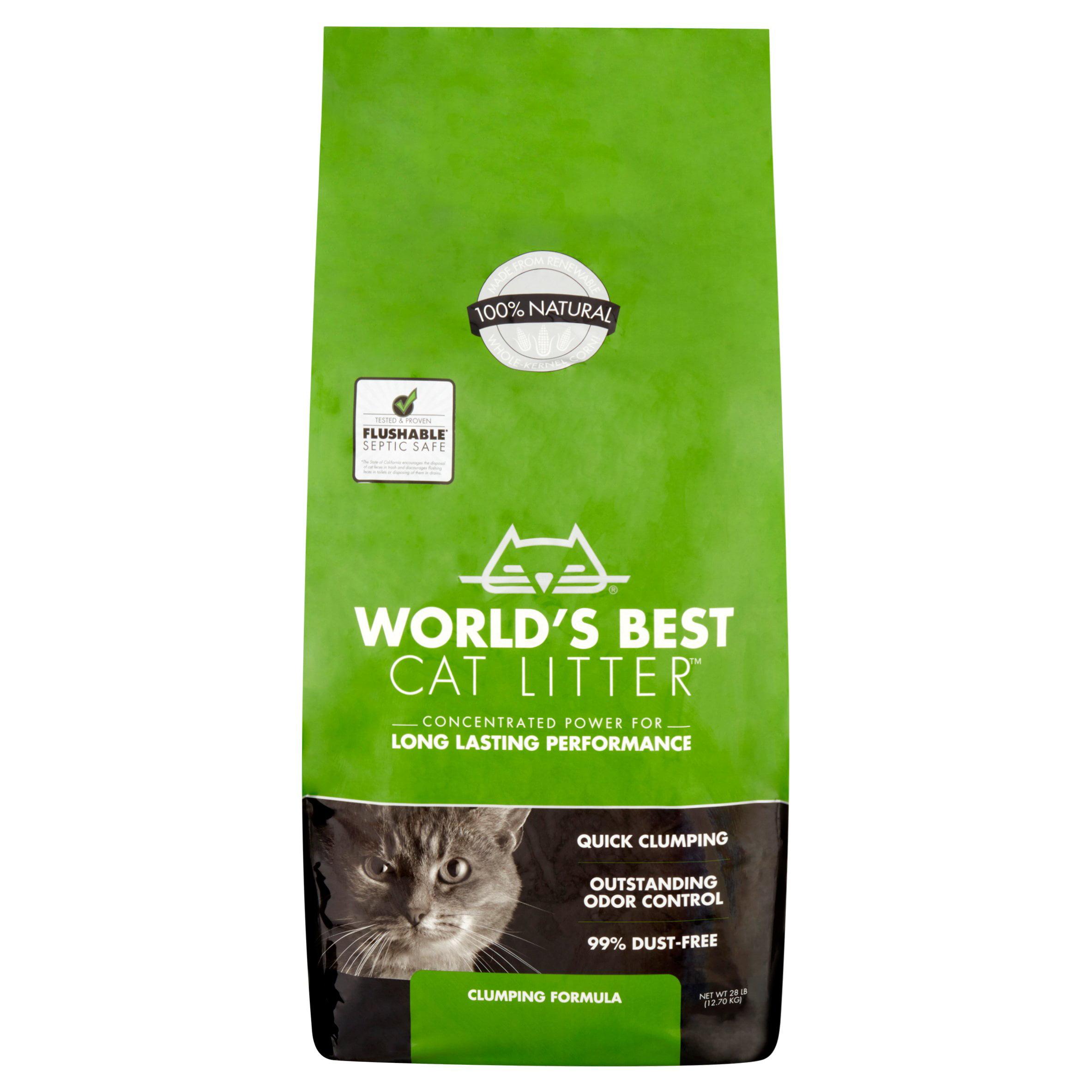 Best organic clumping cat litter