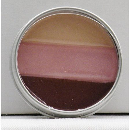 Mary-Kate & Ashley Lip Gloss - Pretty Pink #70743 (Miso Pretty Flavored Lip Gloss)