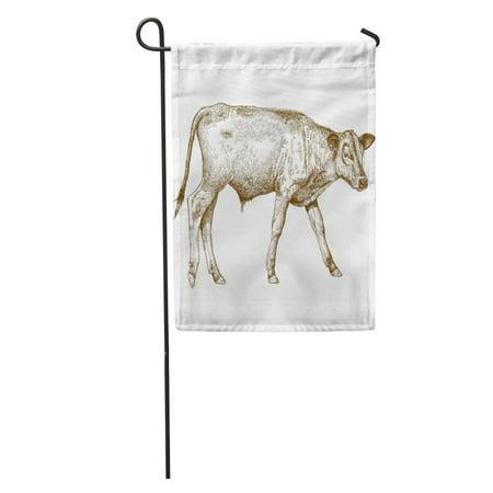 LADDKE Cow Antique Engraving of Calf Draw Beef Contour Bison Garden Flag Decorative Flag House Banner 28x40 inch ()