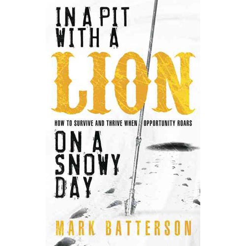 In a Pit with a Lion on a Snowy Day : How to Survive and Thrive When Opportunity Roars