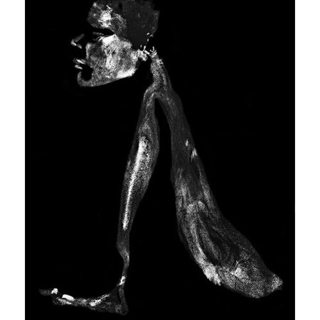 Zatista Limited Edition Sphynx By Norman Lerner Photographic Print