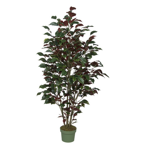 House of Silk Flowers Inc. Ficus Tree in Pot