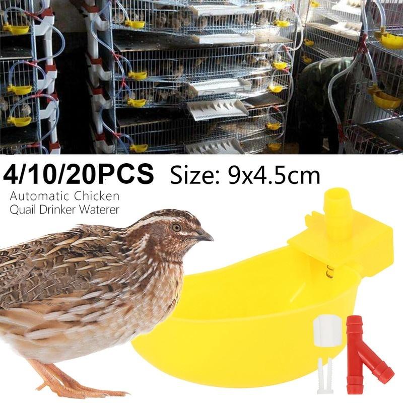 20x Chicken Drink Quail Waterer Bowls Bird Duck Automatic Feeder Drinking Cups.