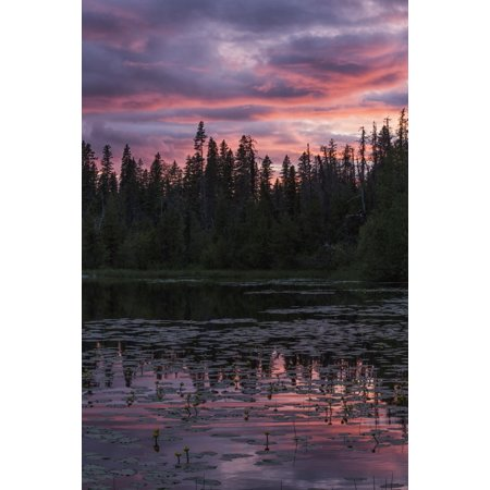 Small Cabasa - Sunset over a small beaver pond along the Yellowhead Highway near Smithers British Columbia Canada Stretched Canvas - Robert Postma  Design Pics (12 x 19)
