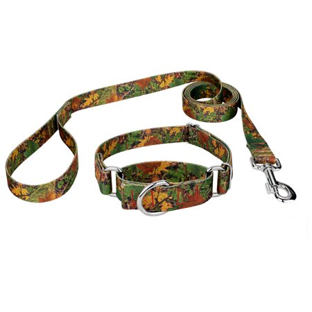 Country Brook Design® Southern Forest Camo Martingale Dog Collar &