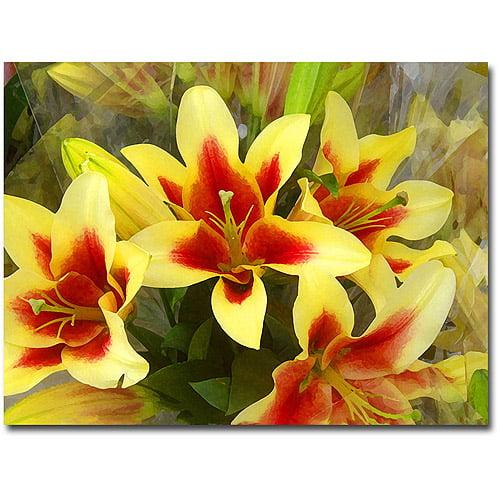 """Trademark Fine Art """"Lillies"""" Canvas Wall Art by Amy Vangsvard"""