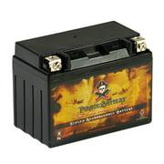 Pirate Battery YTX12-BS (12-BS 12 Volt,10 Ah, 180 CCA) Power Sports Battery replaces 12-bs Etx12 Gtx12-bs Cytx12-bs Ctx12-bs