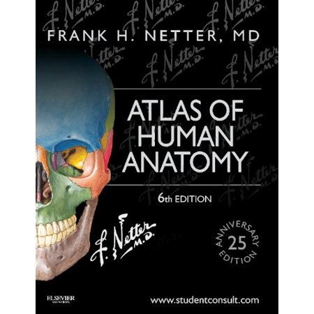 Atlas Of Human Anatomy By Frank Netter Walmart