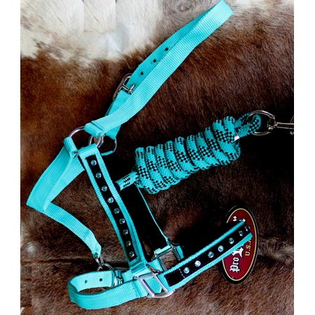 Quality Horse Halter (Nylon Horse HALTER Lead Rope Noseband Tack Teal 606122.)