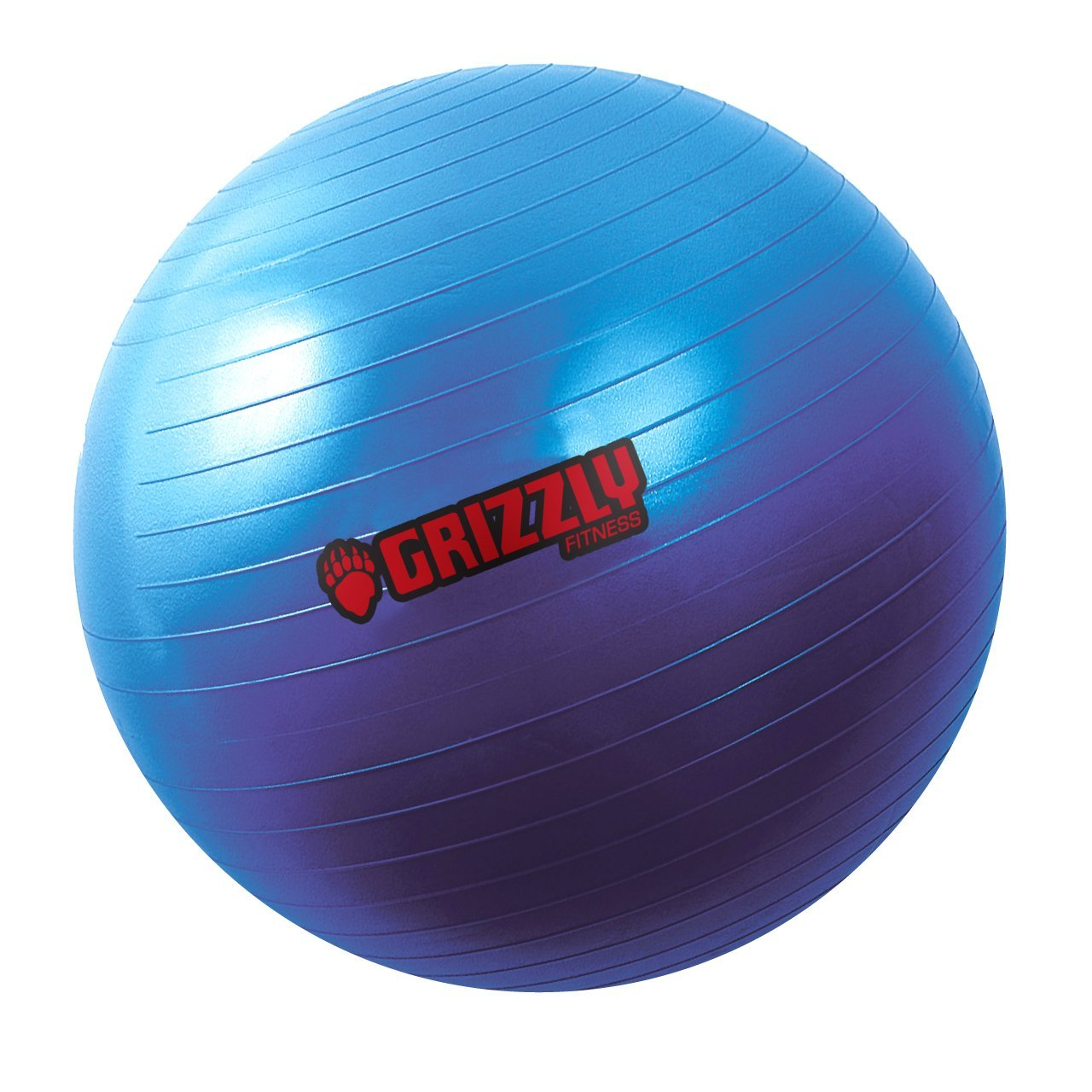 Grizzly Fitness 75cm Anti Burst Training Ball (Pump Included)