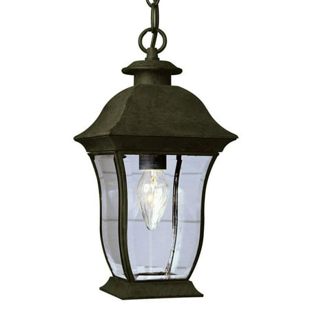 Trans Globe Lighting 4974 Single Light Down Outdoor Pendant From The Collection