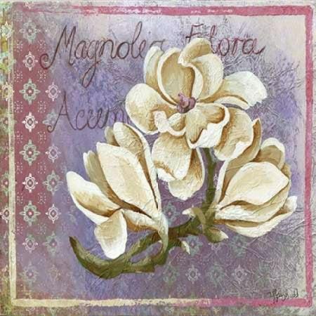 Magnolia Poster Print by Tiffany (Tiffany Magnolia)