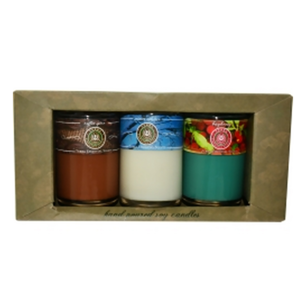 Candle Gift Set 3 Scented Soy Candle Tumblers Bayberry, Winter Solstice And...