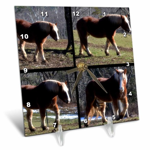 3dRose A four picture square blocked horse collage, Desk Clock, 6 by 6-inch by 3dRose