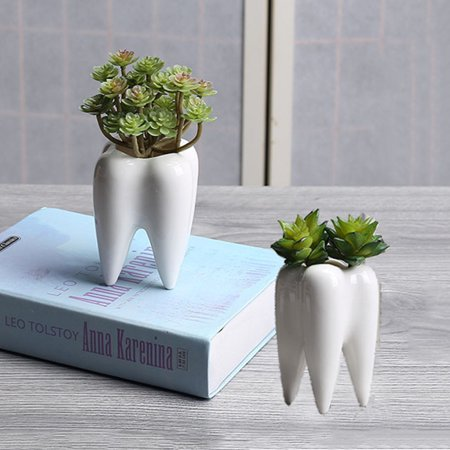 Meigar 2Pcs Ceramic Plant Flower Pot Succulent Garden Home Decorative Storage - Decorative Planting Pots
