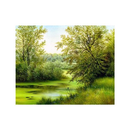 Spring Trees Scene Simple Color Full Printed 5D Rhinestone Painting DIY Cross-stitch of Diamond Needlework (Cross Stitch Printed)