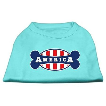 Bonely In America Screen Print Shirt Aqua Xs  8