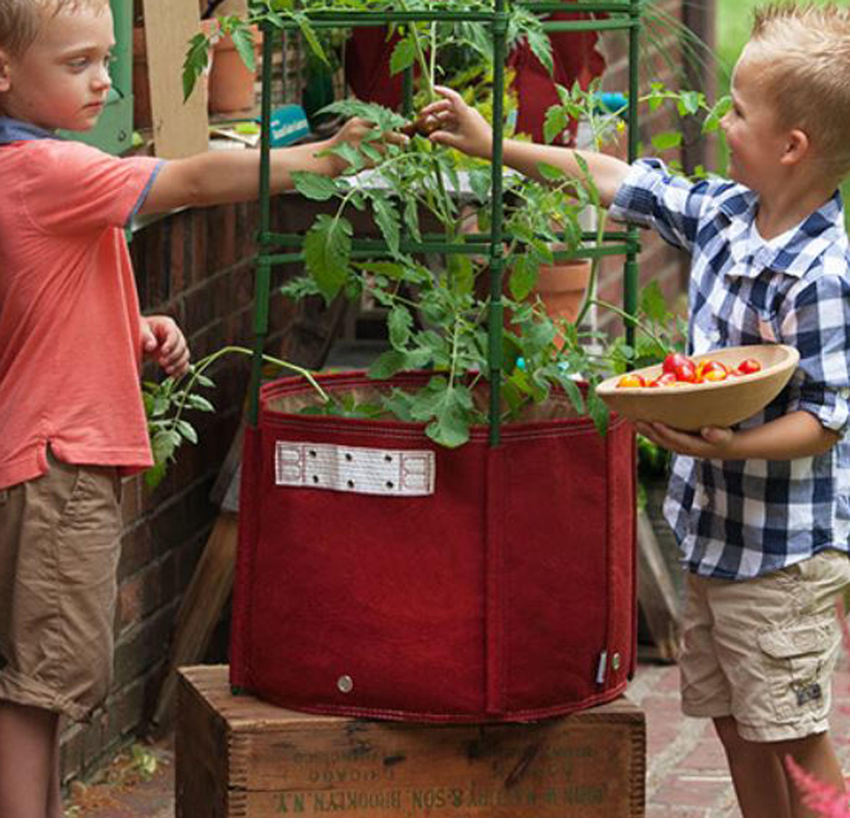 BloemBagz Tomato Vegetable Planter Grow Bag 15 Gallon Union Red by Bloem