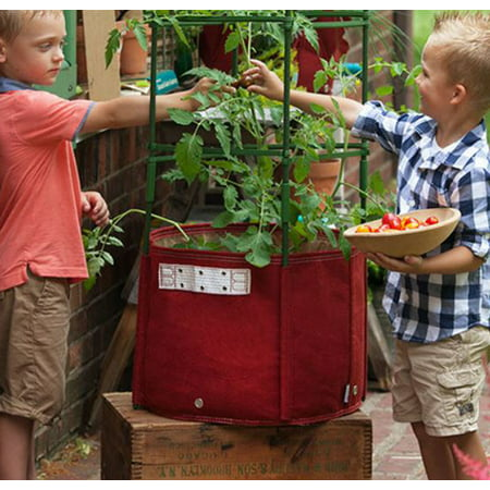 BloemBagz Tomato Vegetable Planter Grow Bag 15 Gallon Union Red