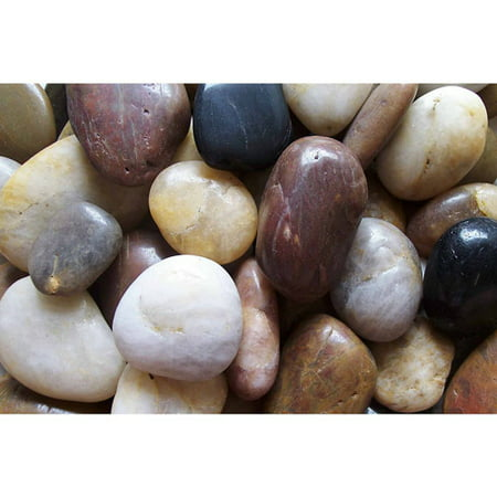 Exotic Pebbles & Aggregates 5 Lb. Mixed Polished