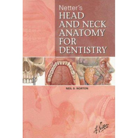 Netter\'s Head and Neck Anatomy for Dentistry - Walmart.com
