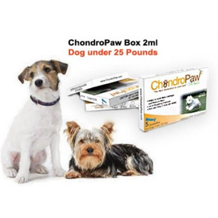 Chondropaw Ch 25lbsunder 2 Ml Joint Repair Formula For