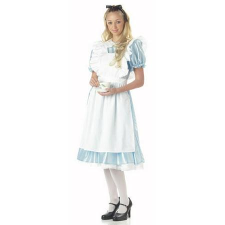 Alice in Wonderland Womens Halloween Costume - Alice In Wonder Land Dress